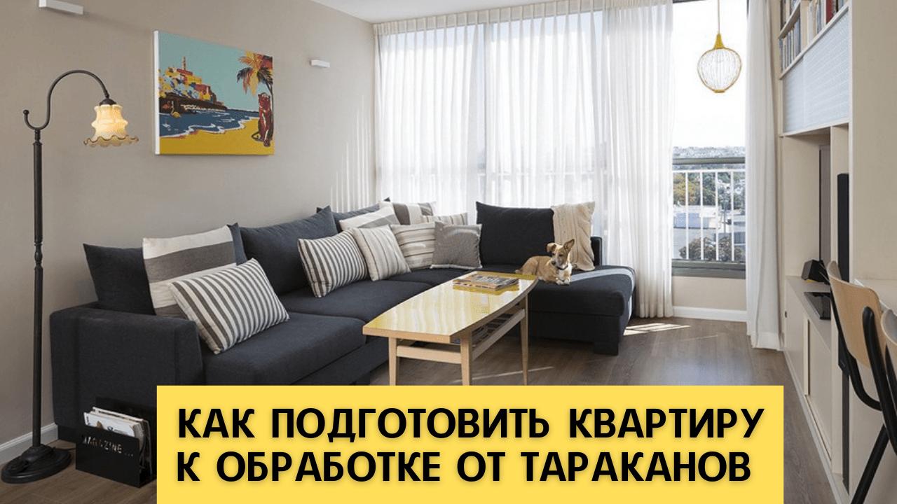 Как подготовить квартиру к обработке от тараканов. Видео